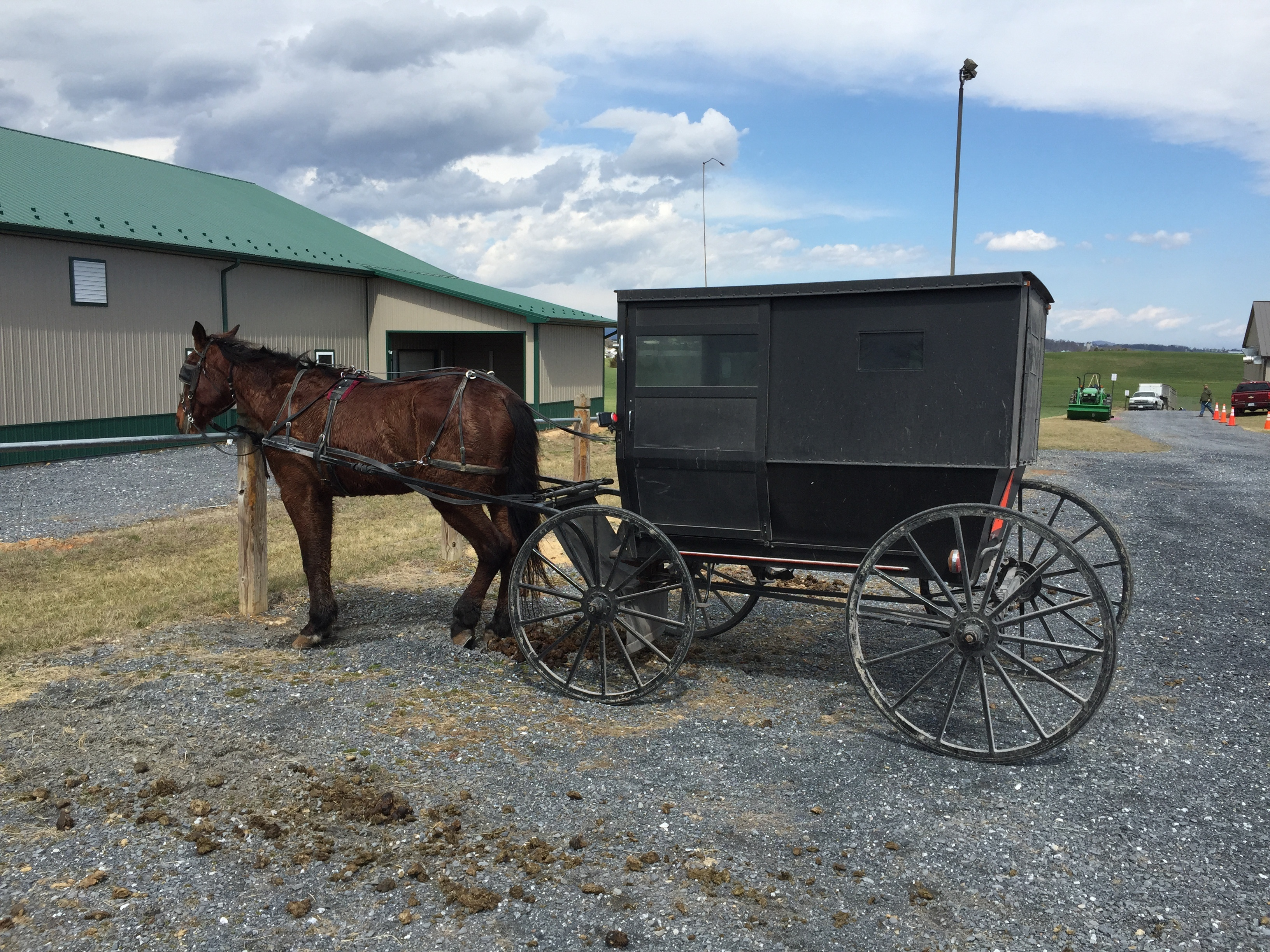 2017-03-18_13_17_22_Mennonite_horse_and_buggy_along_Limestone_Lane_(Virginia_State_Secondary_Route_737)_in_Stemphleytown,_Rockingham_County,_Virginia