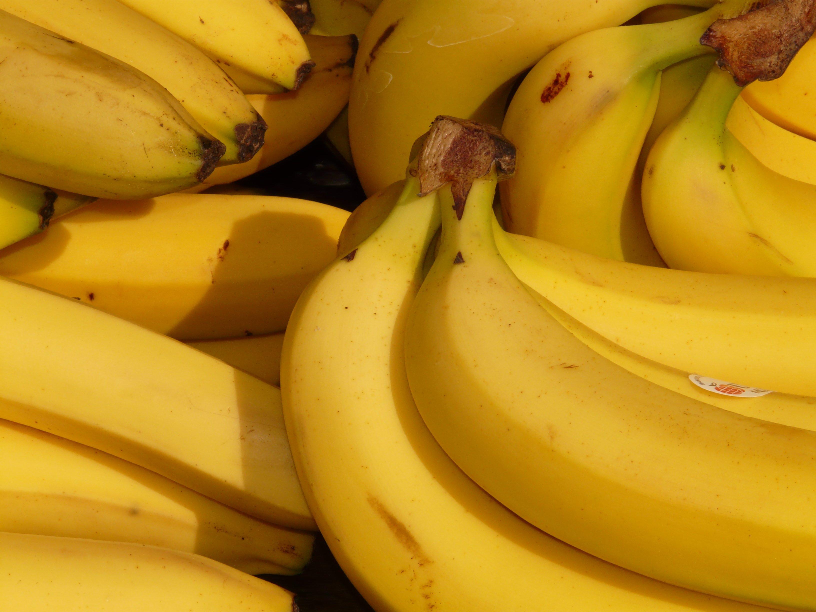 Bananas on Spoiler Alert.jpeg