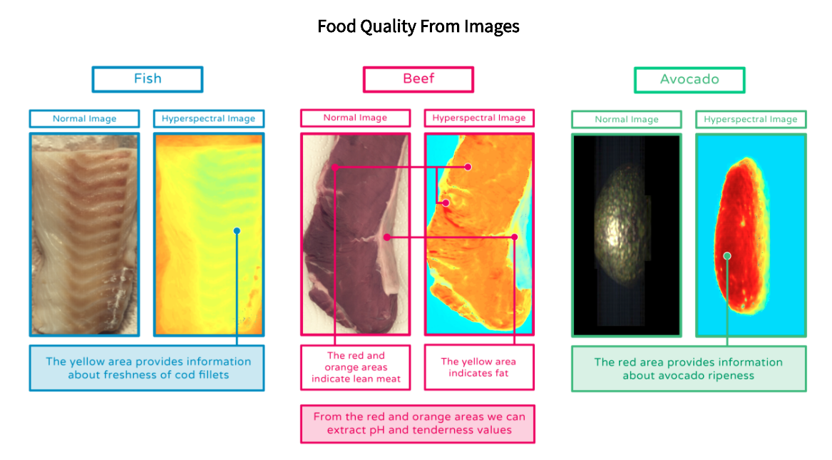 Three emerging technologies that help reduce on-farm food waste