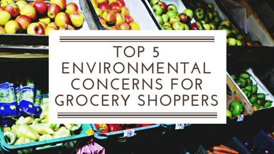 TOP_5_ENVIRONMENTAL_CONCERNS_FOR_GROCERY_SHOPPERS-1.png