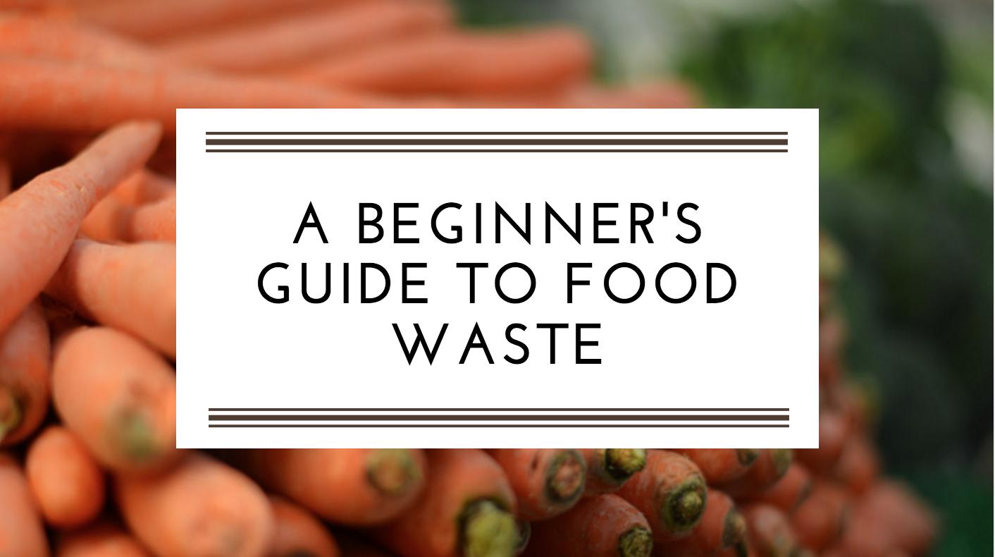 Food Waste: A Beginner's Guide
